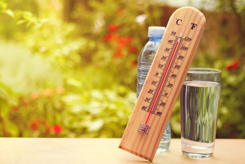 Temperature Rising During Heat Wave in the Hague